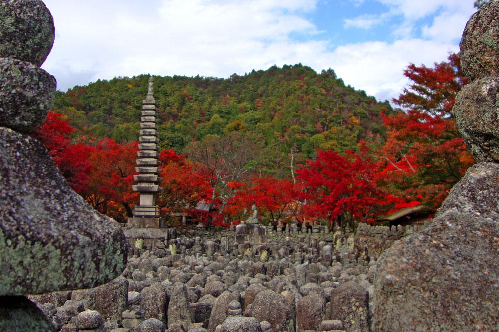 化野念仏寺の紅葉写真の写真素材