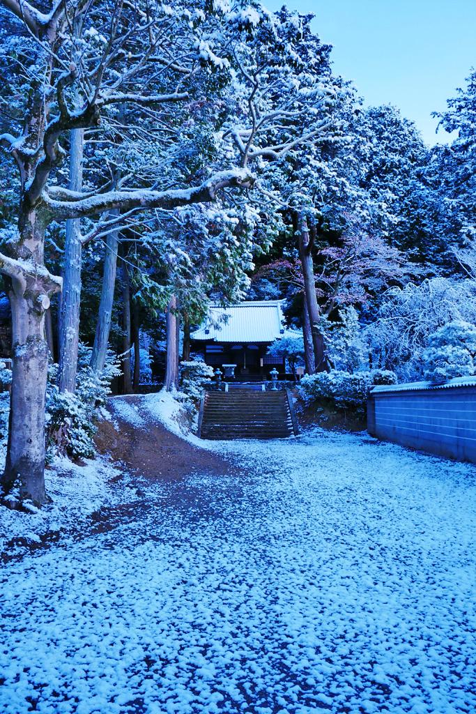 雪の安祥寺の写真素材