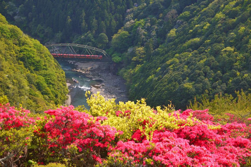 嵐山高雄パークウェイの眺望の写真素材