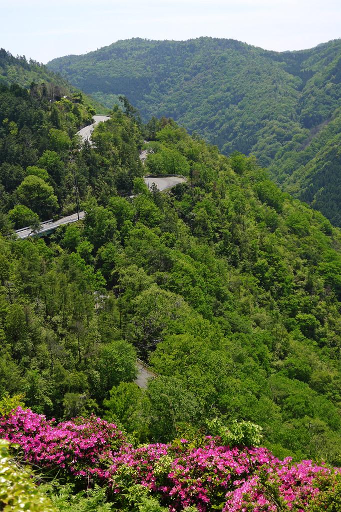 嵐山高雄パークウェイの写真素材