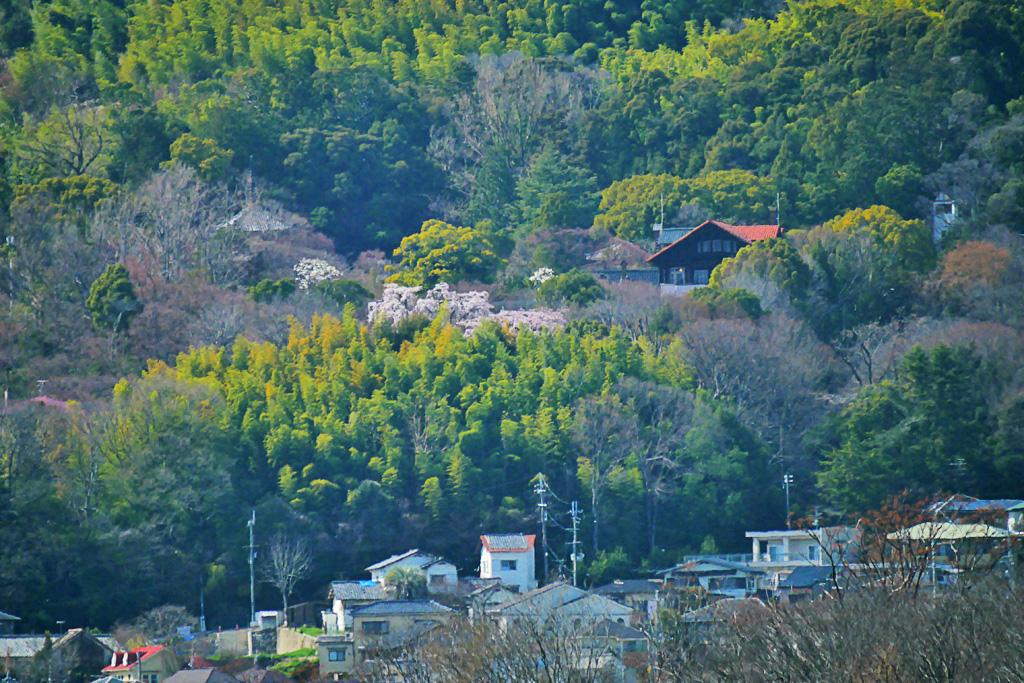 アサヒビール大山崎山荘美術館の写真素材