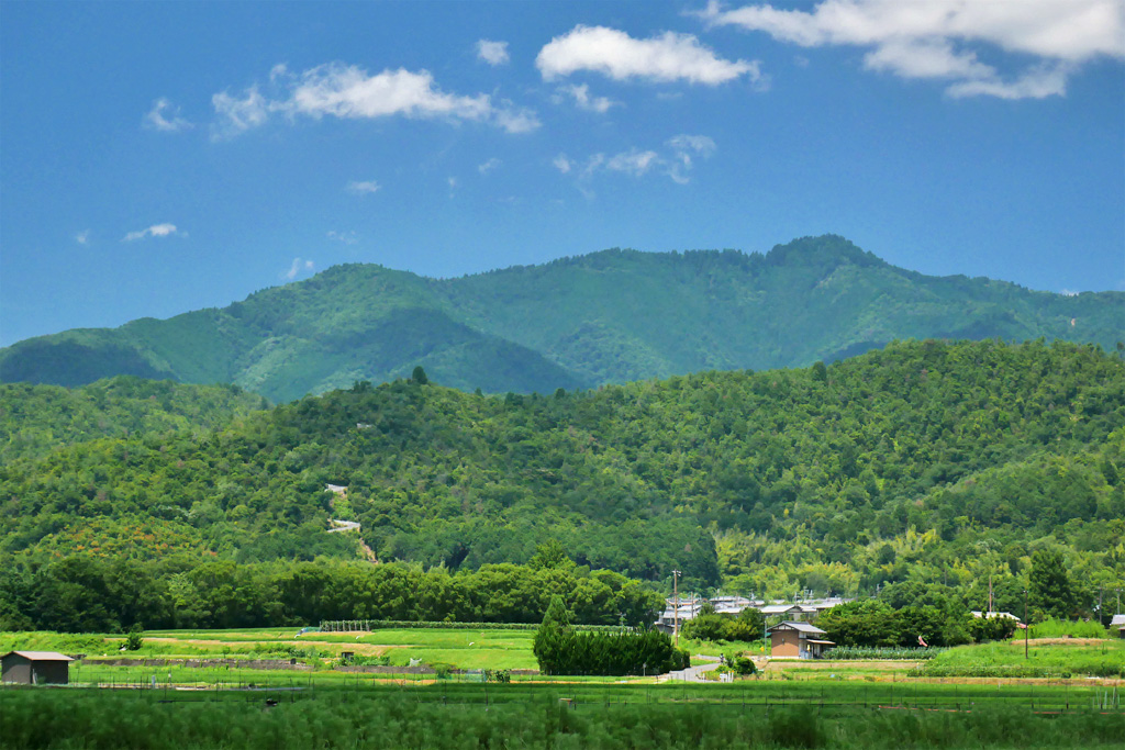 愛宕山の写真素材