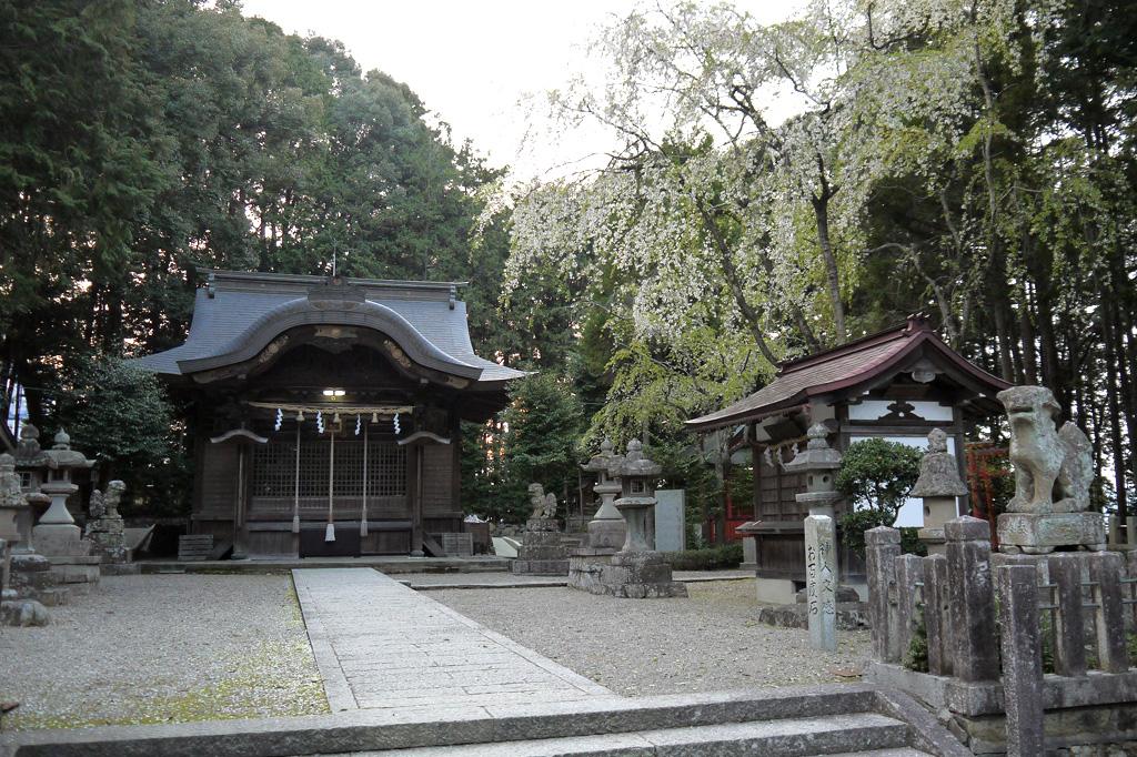 綾部八幡宮の写真素材