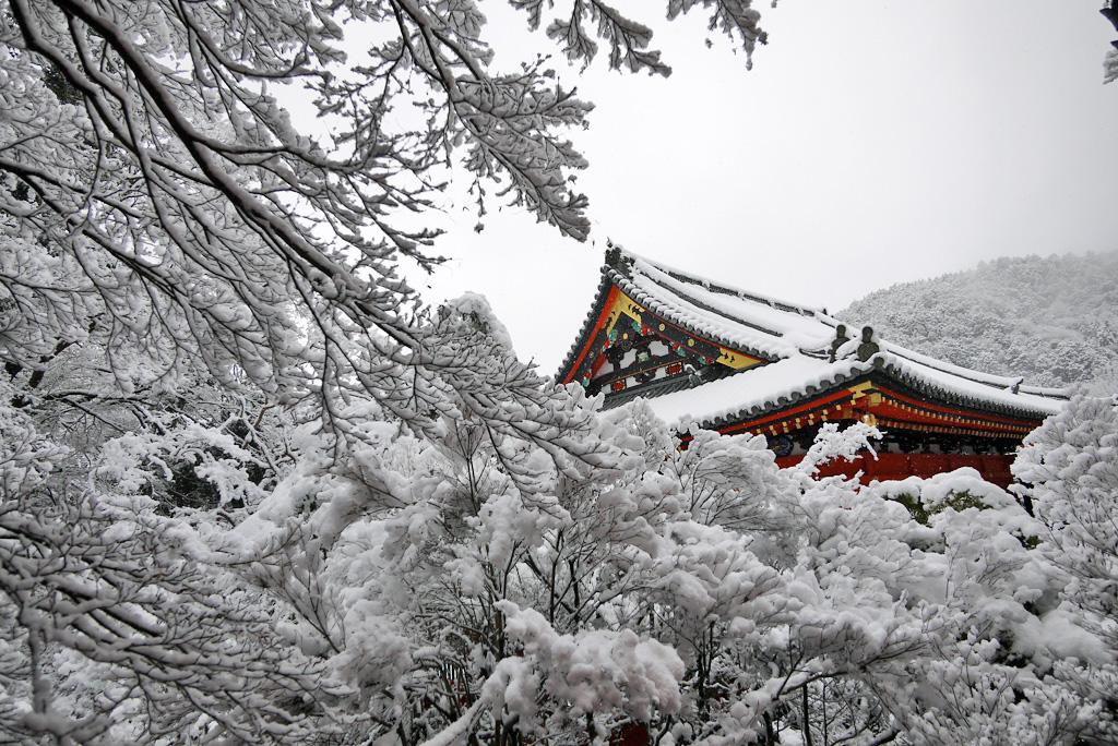 毘沙門堂 本堂の雪景色