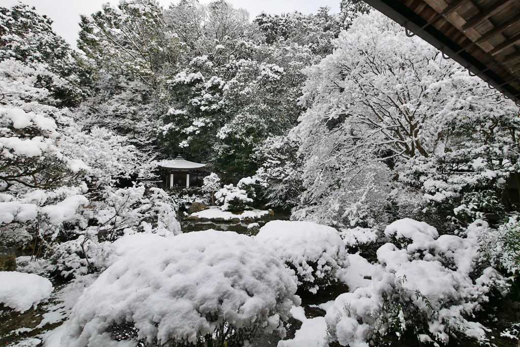 山科毘沙門堂の雪景色の写真素材
