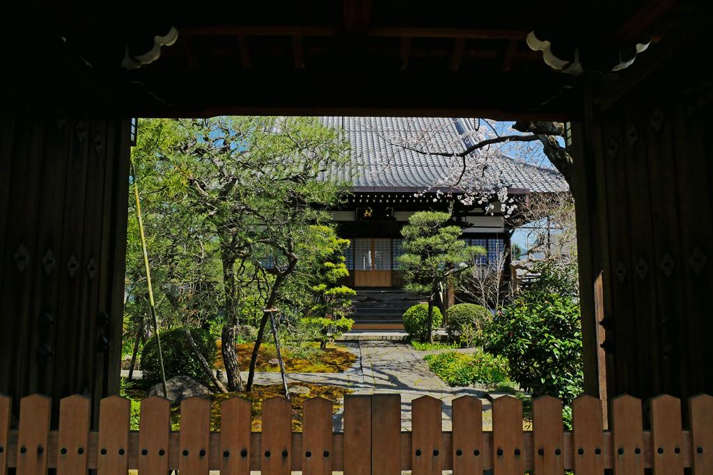 仏陀寺の写真素材