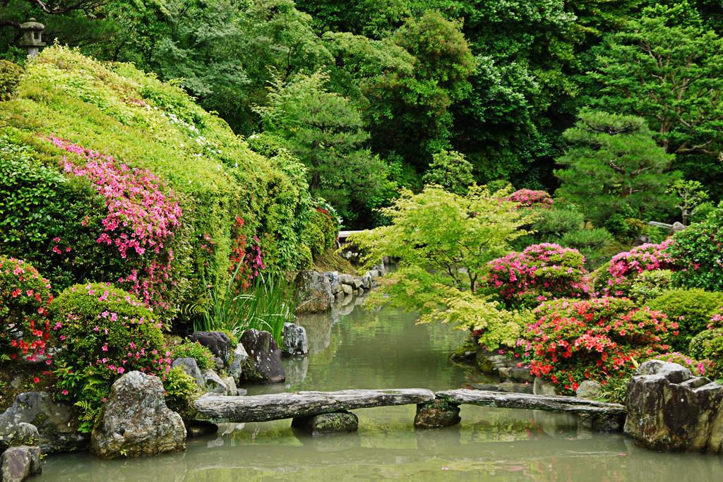 智積院の名勝庭園の写真素材