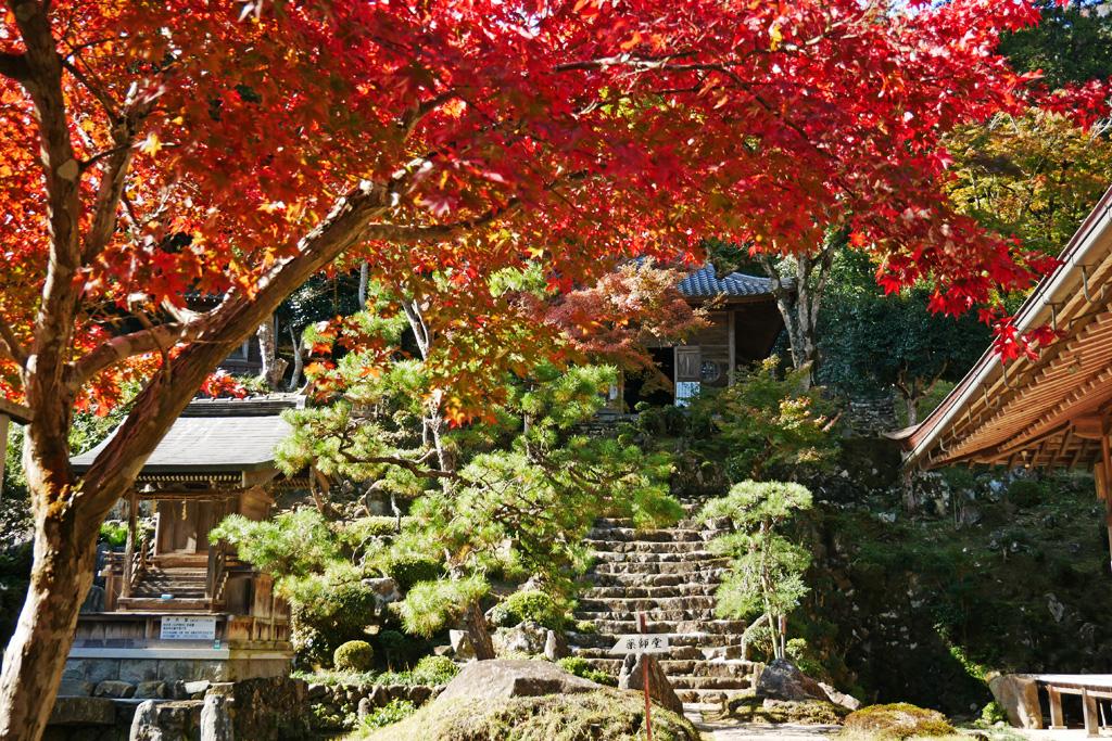 長安寺の紅葉の写真素材