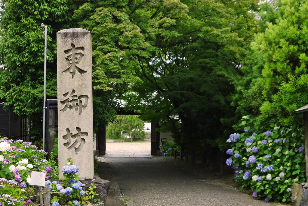東本願寺山科別院長福寺の写真素材