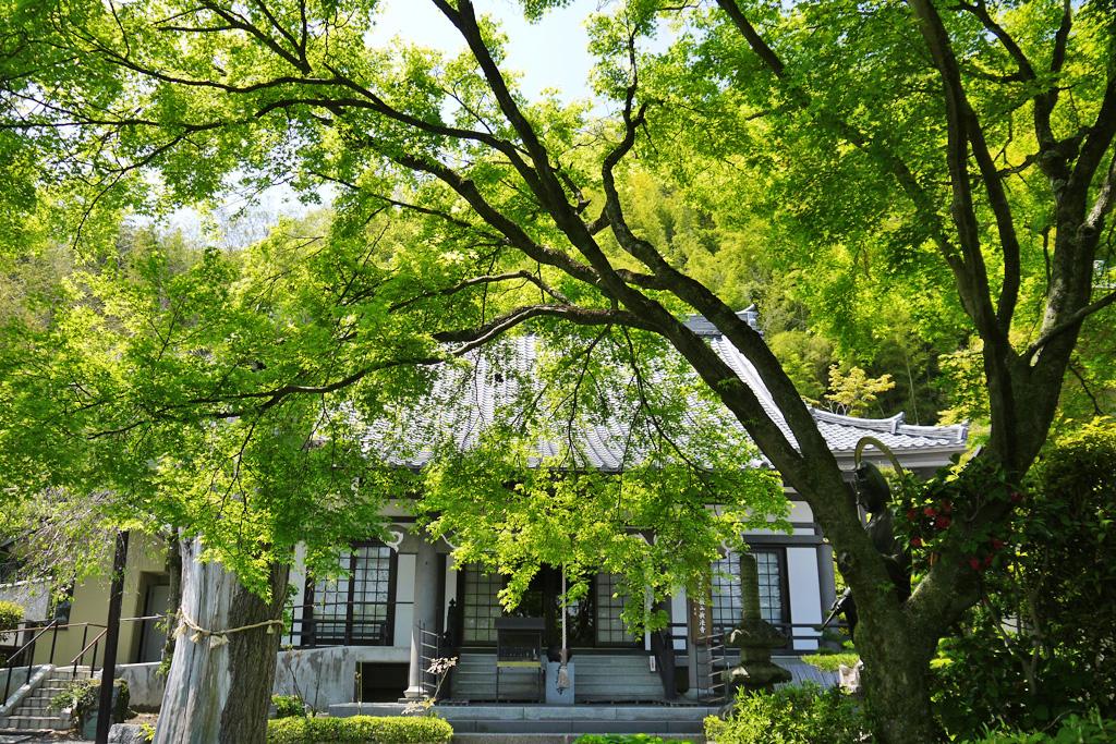 長法寺の写真素材