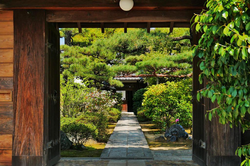 妙心寺 長慶院の写真素材