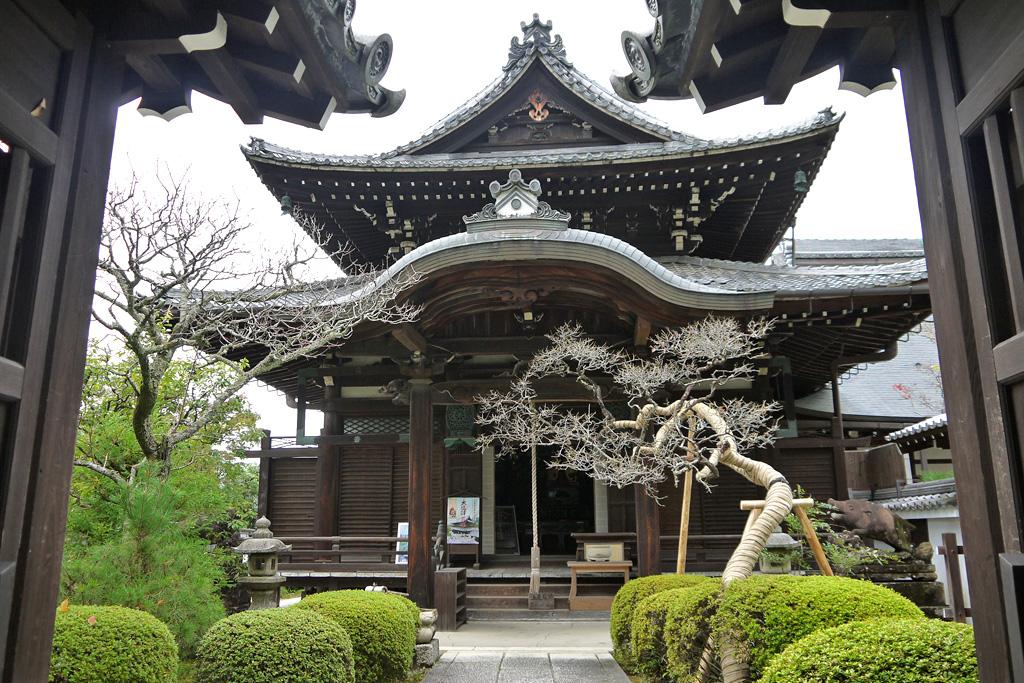 南禅寺 聴松院の写真素材