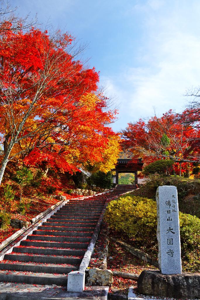 大圓寺の写真素材