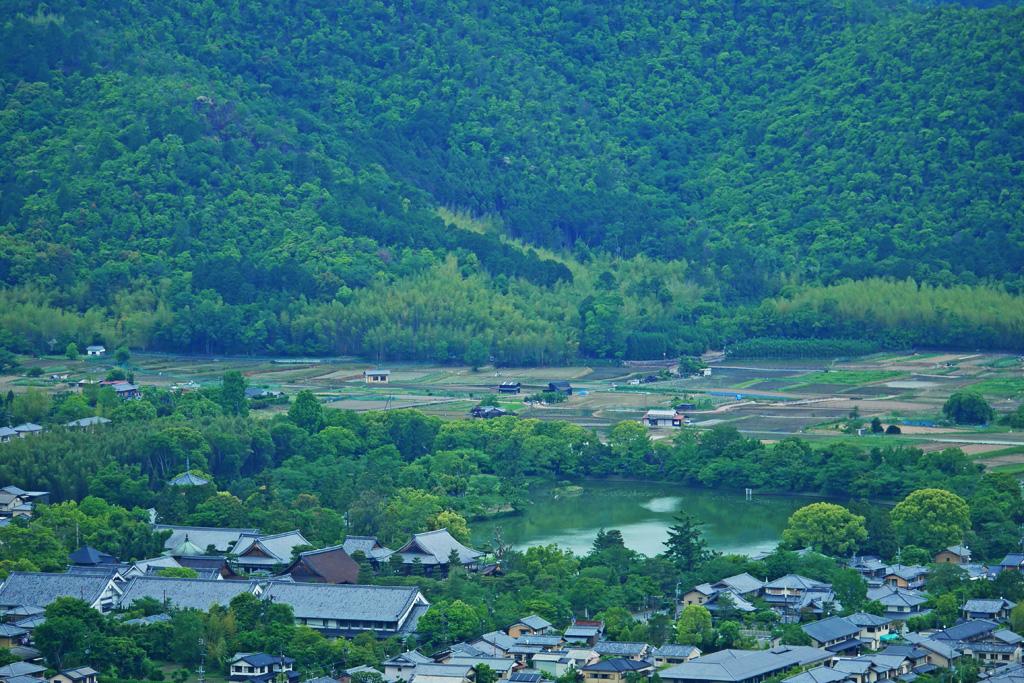 大沢池と大覚寺の写真素材