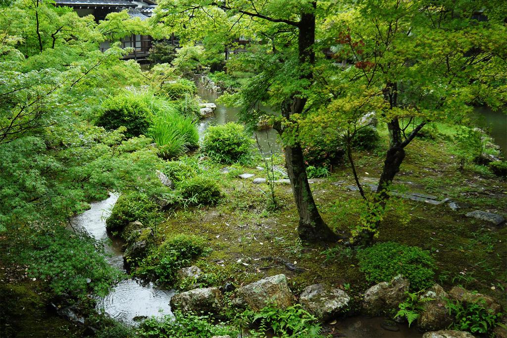 雨の大覚寺の写真素材