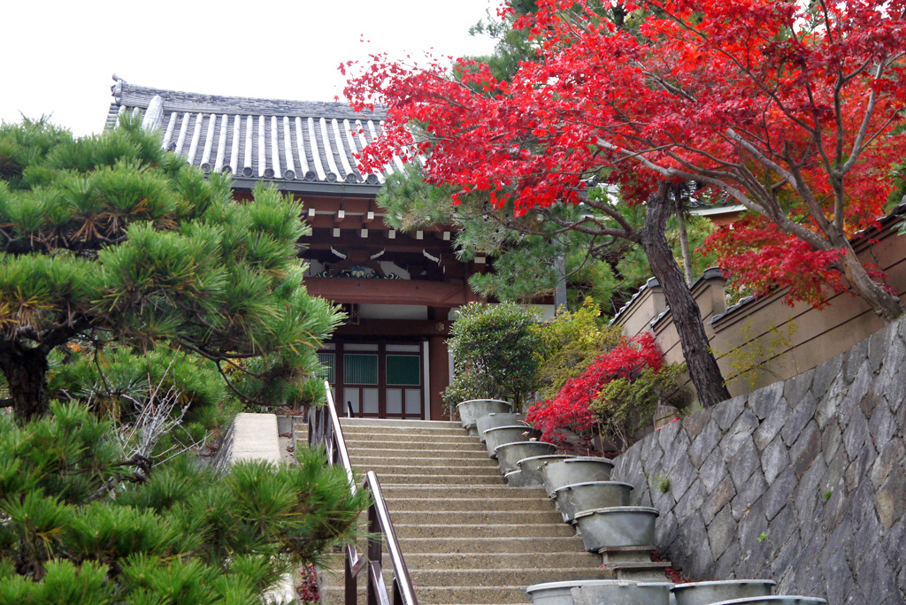 大龍寺の写真素材