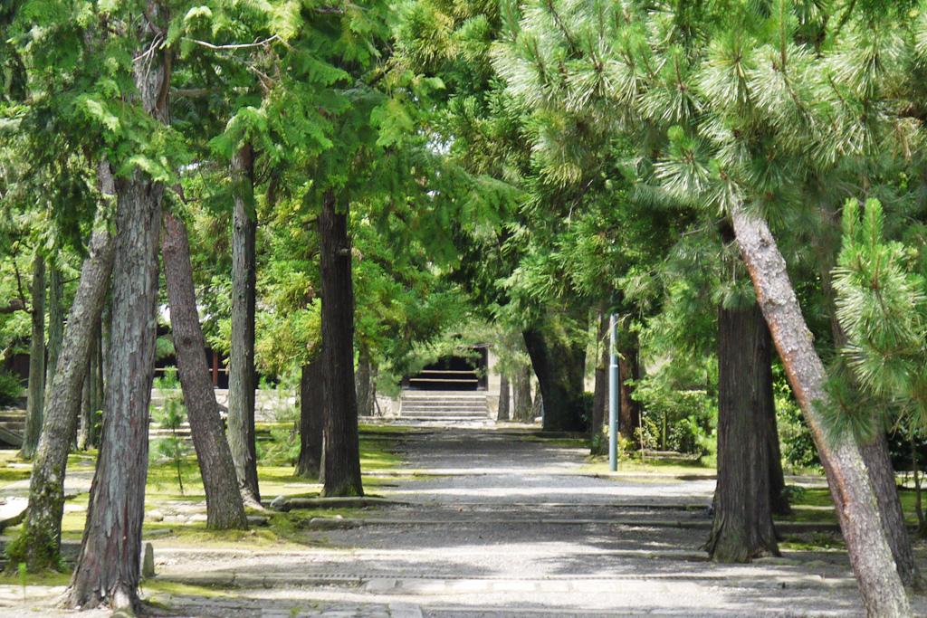 大徳寺の写真素材
