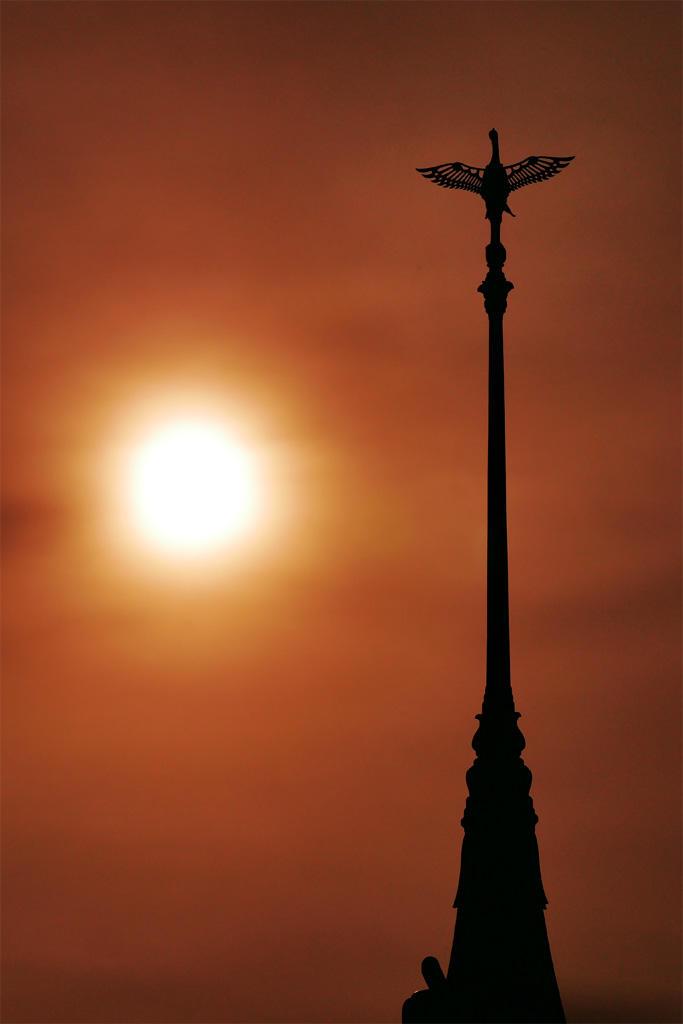 祇園の塔の鶴の写真素材