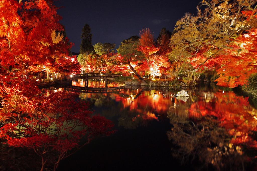 永観堂の紅葉-夜間拝観