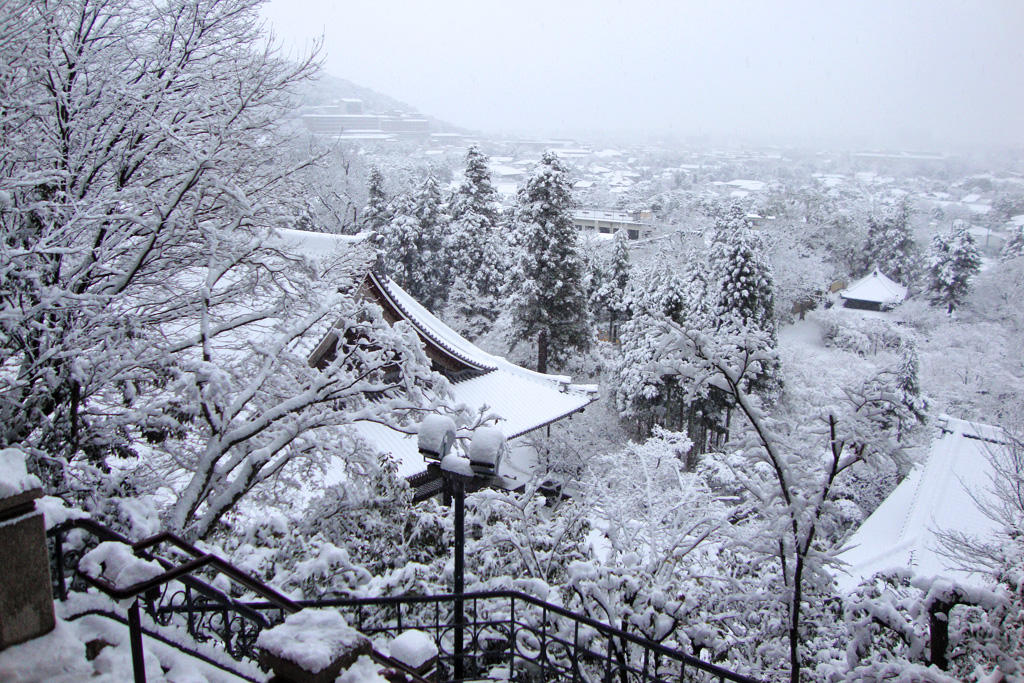 永観堂の雪景色の写真素材
