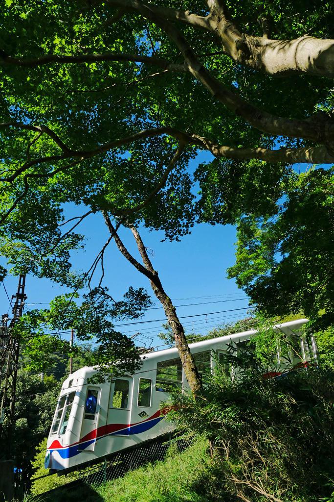 叡山ケーブルの写真素材