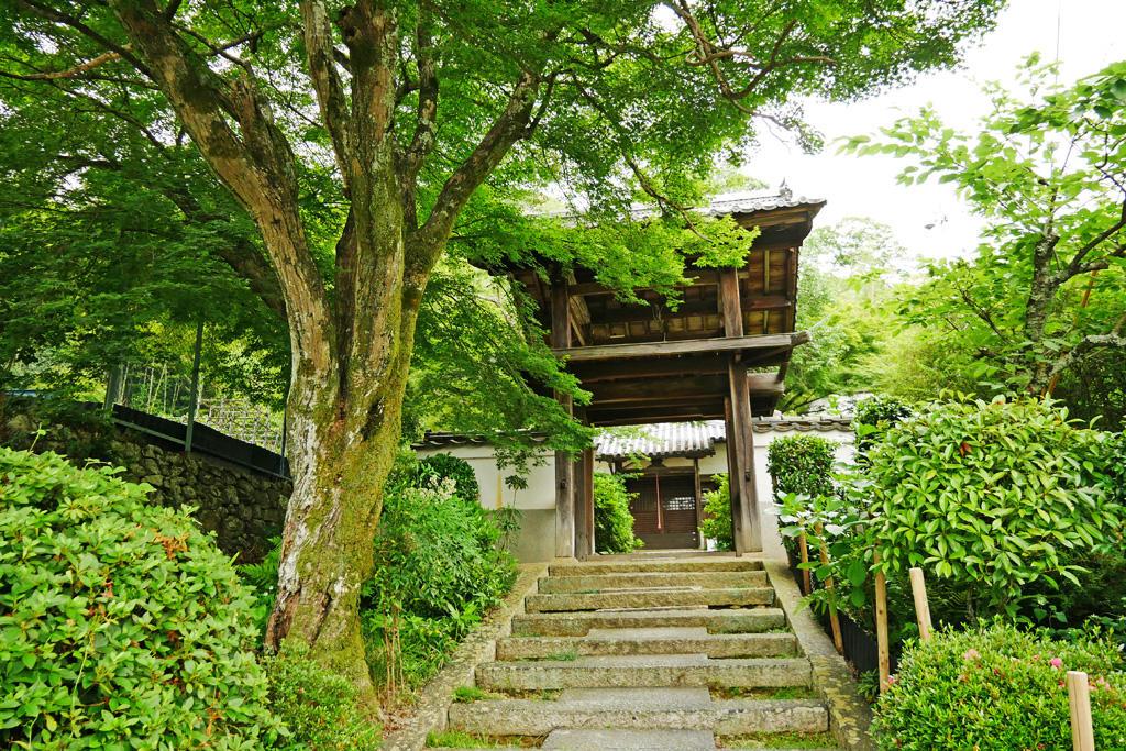 円明教寺の写真素材