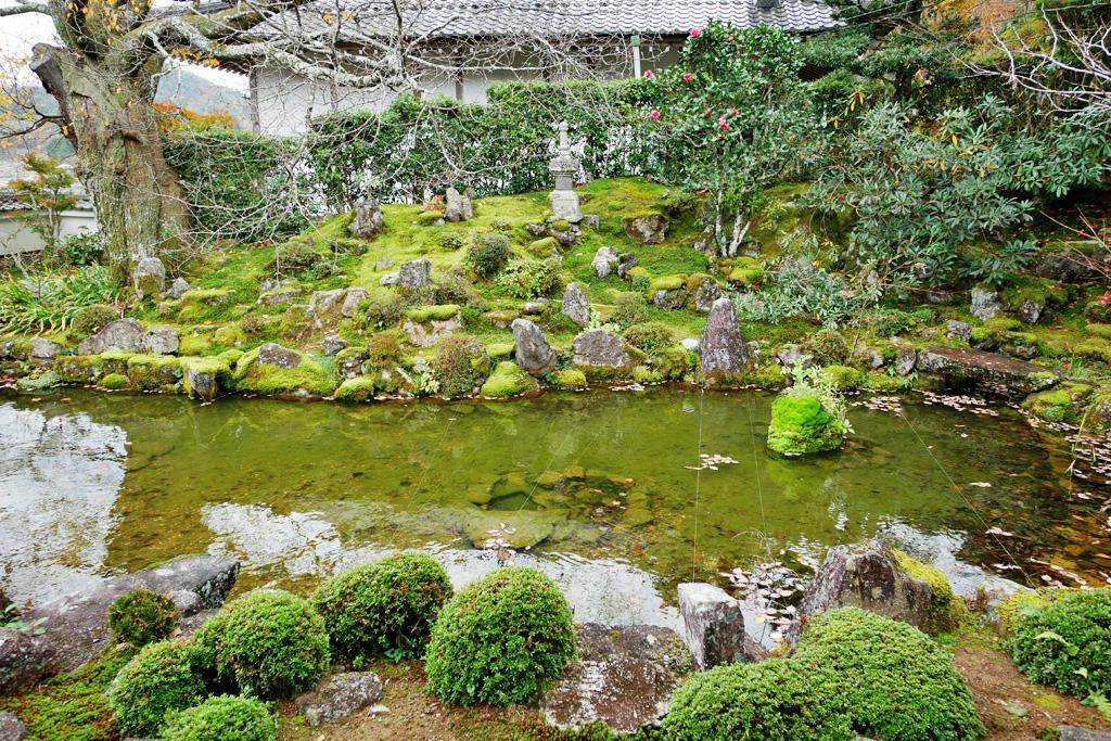 亀岡 延福寺の写真素材