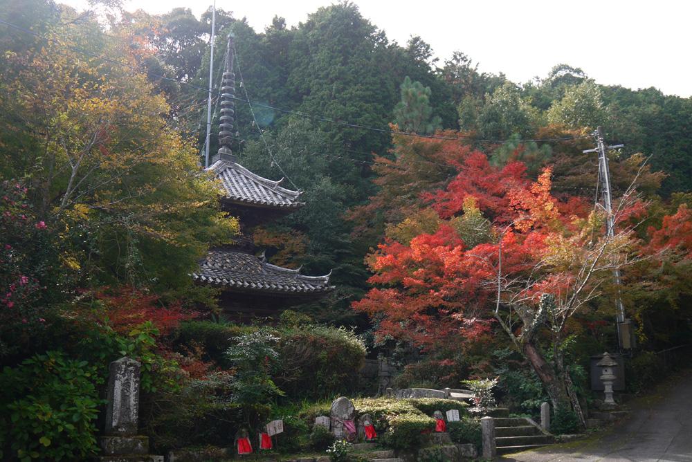西舞鶴 円隆寺の紅葉写真素材