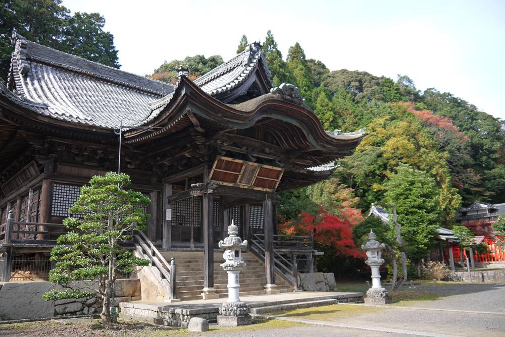 西舞鶴 円隆寺の紅葉