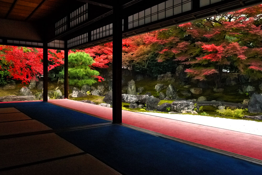 圓徳院の紅葉の写真素材