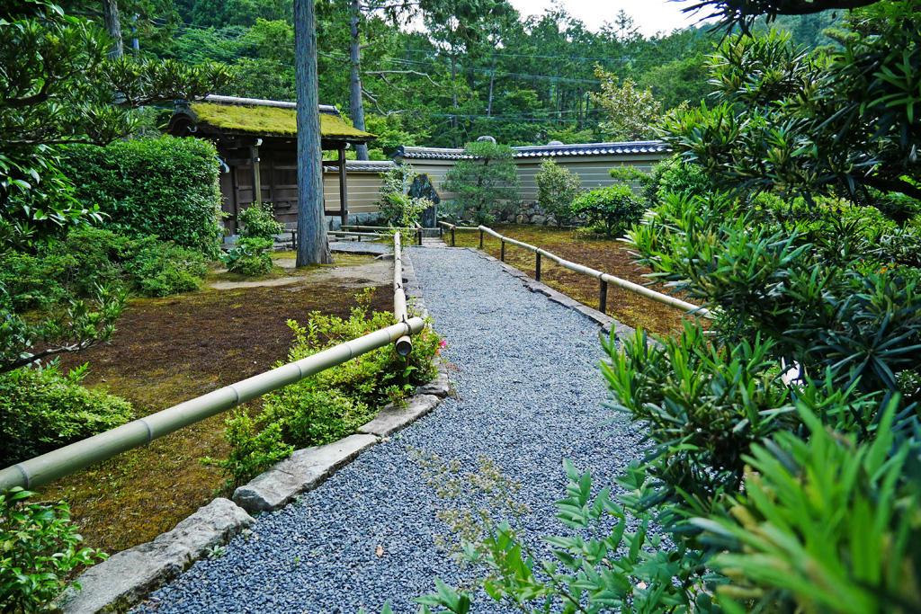 6月の圓通寺の枯山水庭園の写真素材