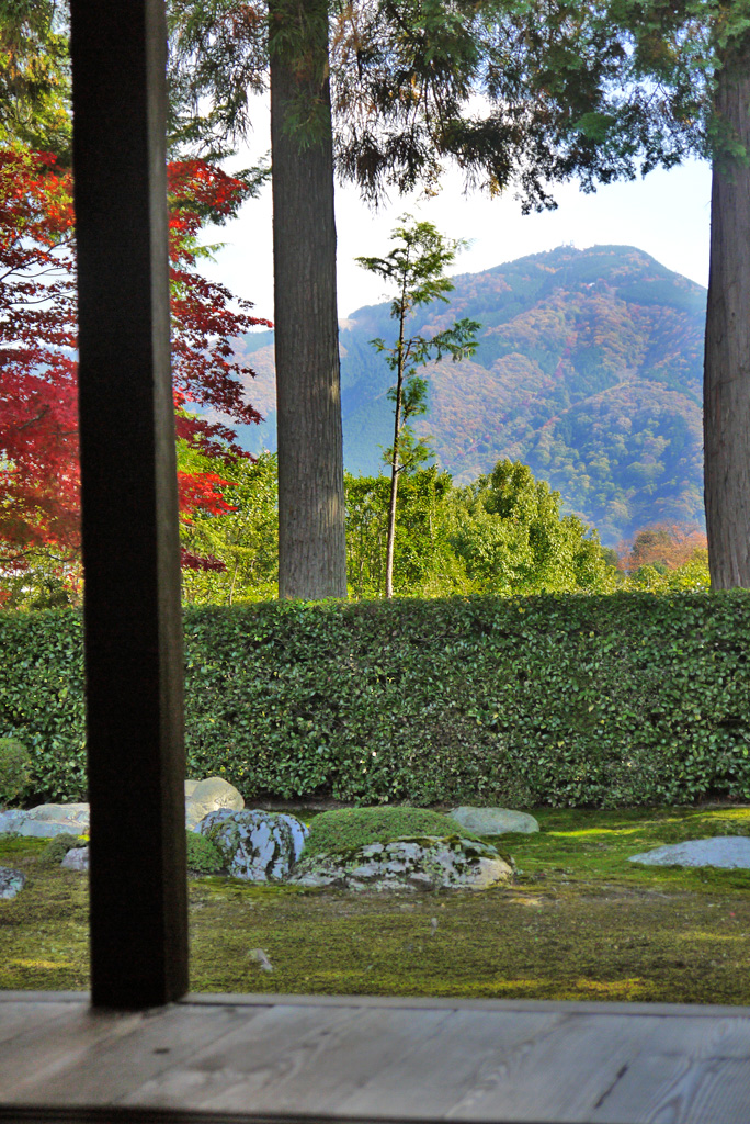 圓通寺の枯山水庭園の紅葉の写真素材