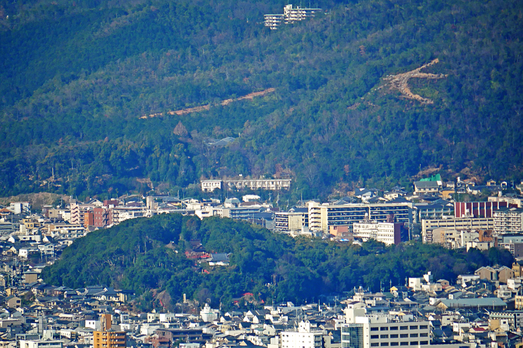 船岡山の写真素材