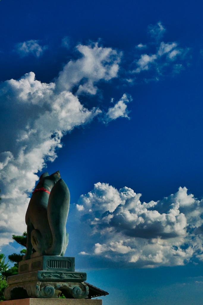 伏見稲荷の狐と夏空の写真素材