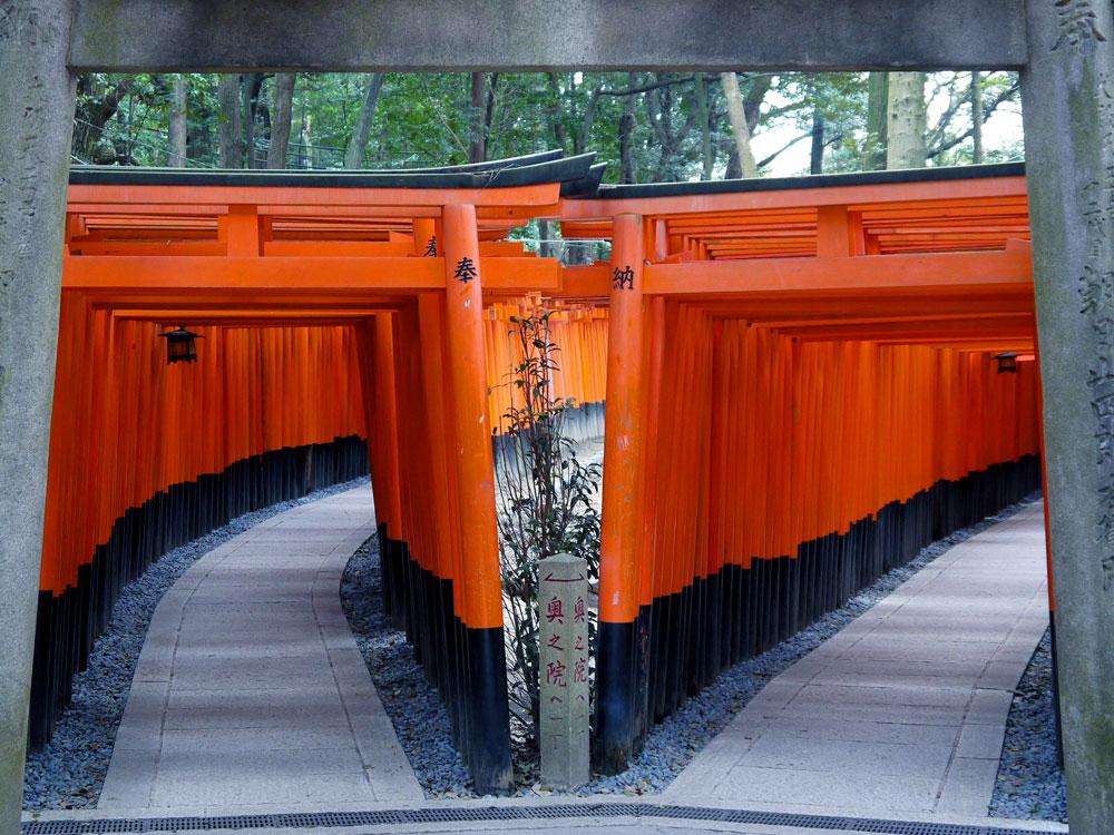 伏見稲荷大社の写真素材