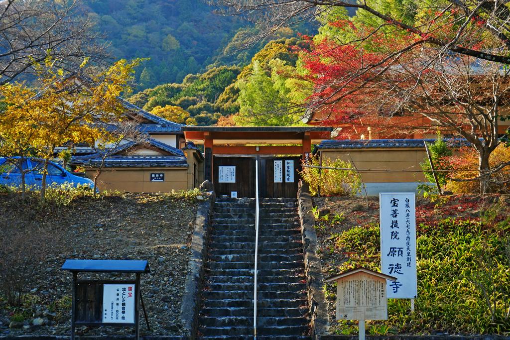 願徳寺の写真素材
