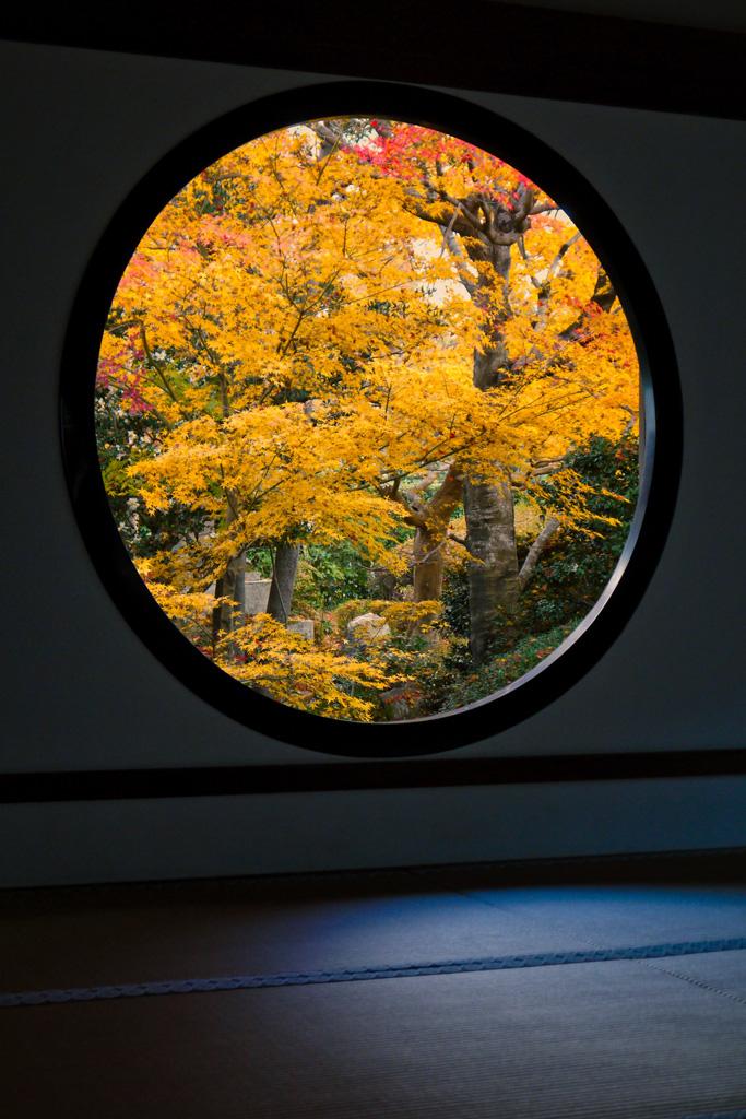 源光庵の紅葉の窓の写真素材