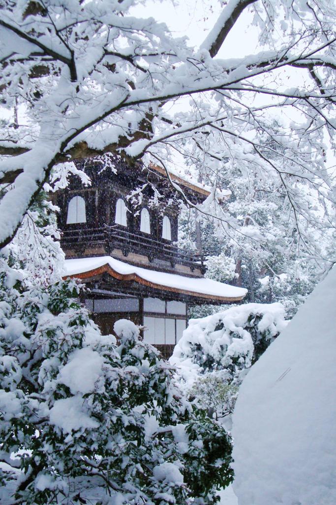 雪の日の銀閣の写真素材