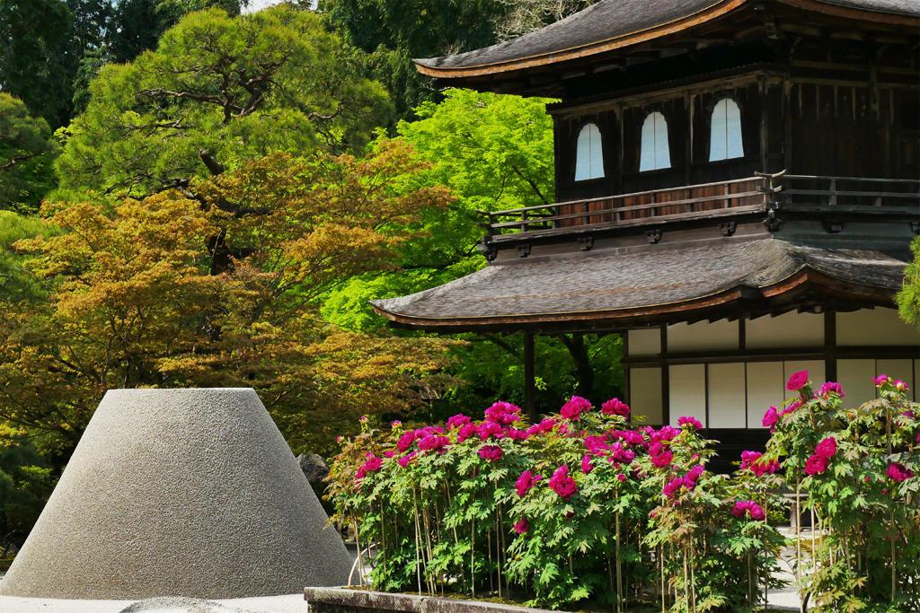 銀閣寺のボタンの写真素材