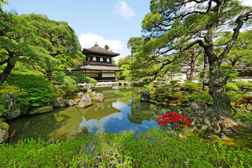 新緑の銀閣寺の写真素材
