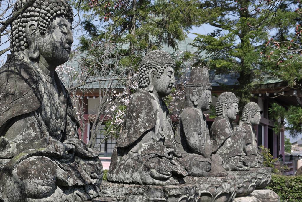 五智山蓮華寺の写真素材