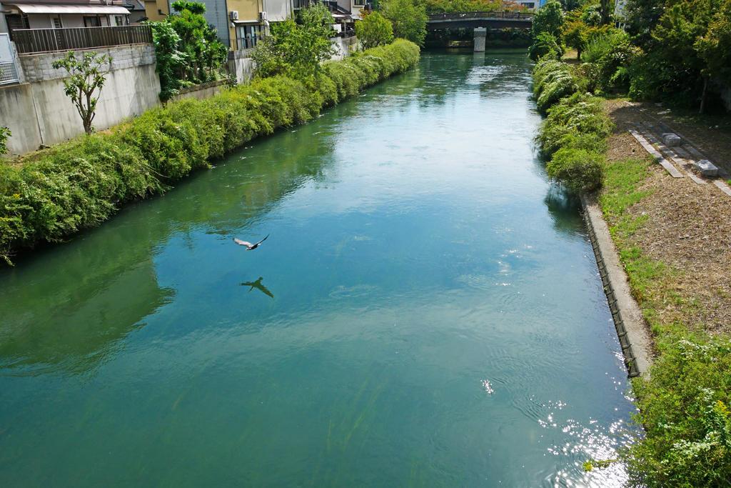 濠川の写真素材