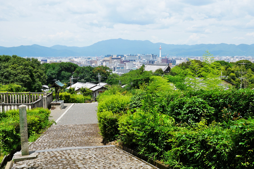 仲恭天皇陵の写真素材