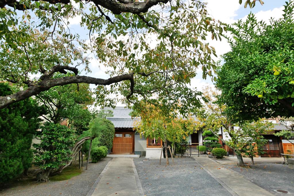 弘誓寺の写真素材