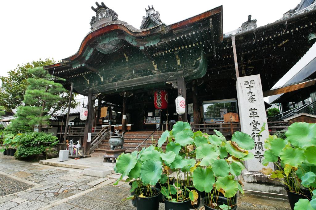 行願寺(革堂)の写真素材