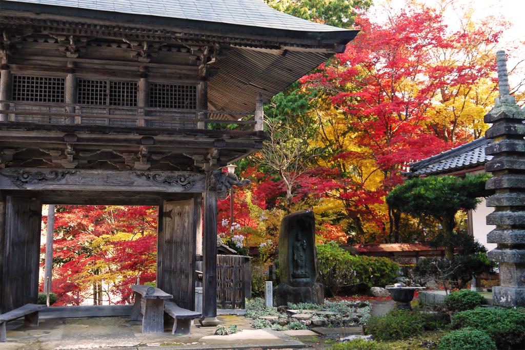 玉雲寺の紅葉の写真素材