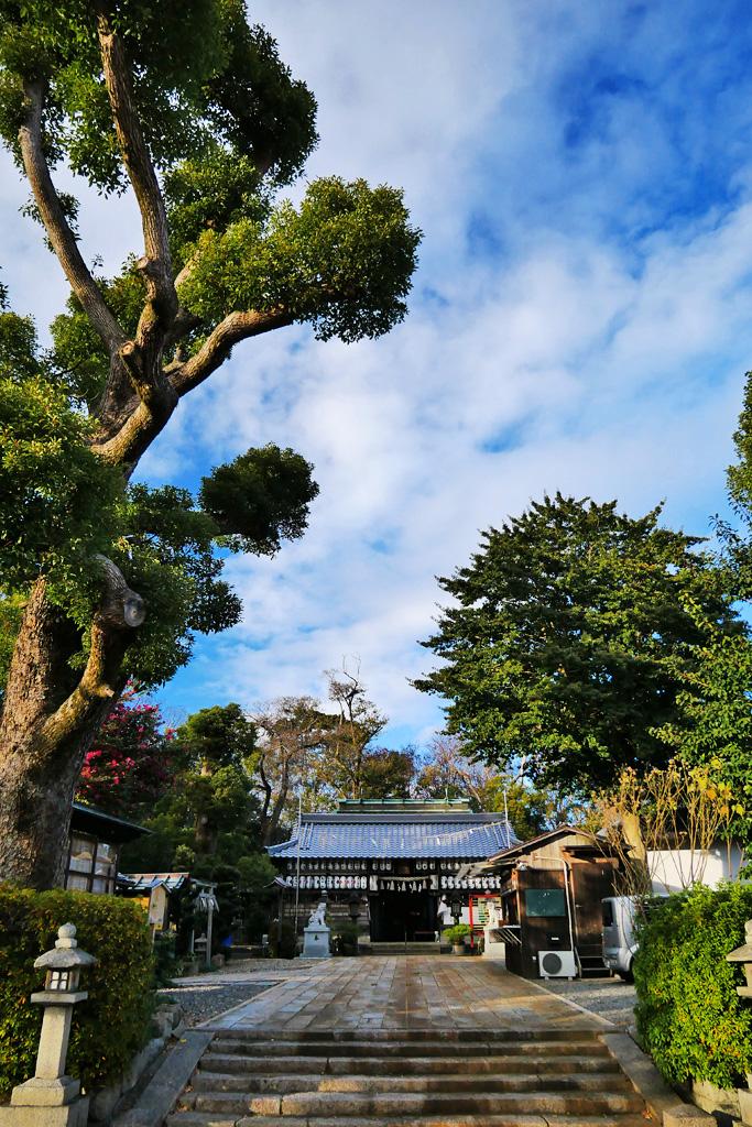 羽束師神社の写真素材