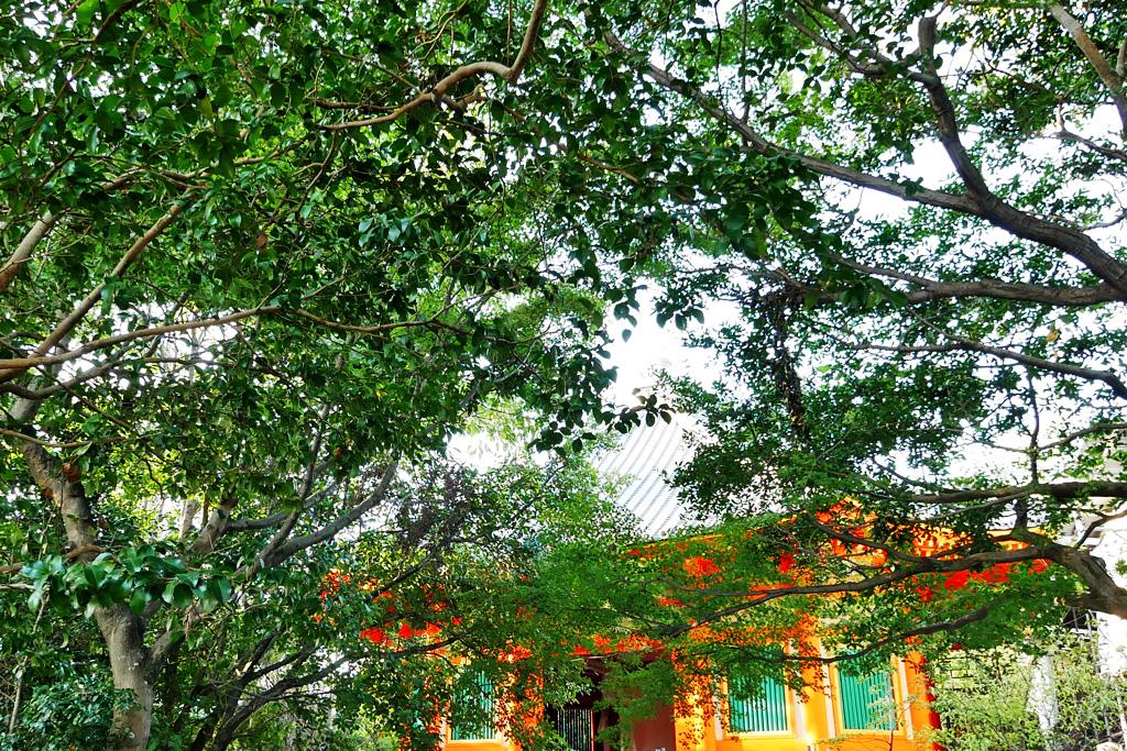 八角堂(八幡市)の写真素材