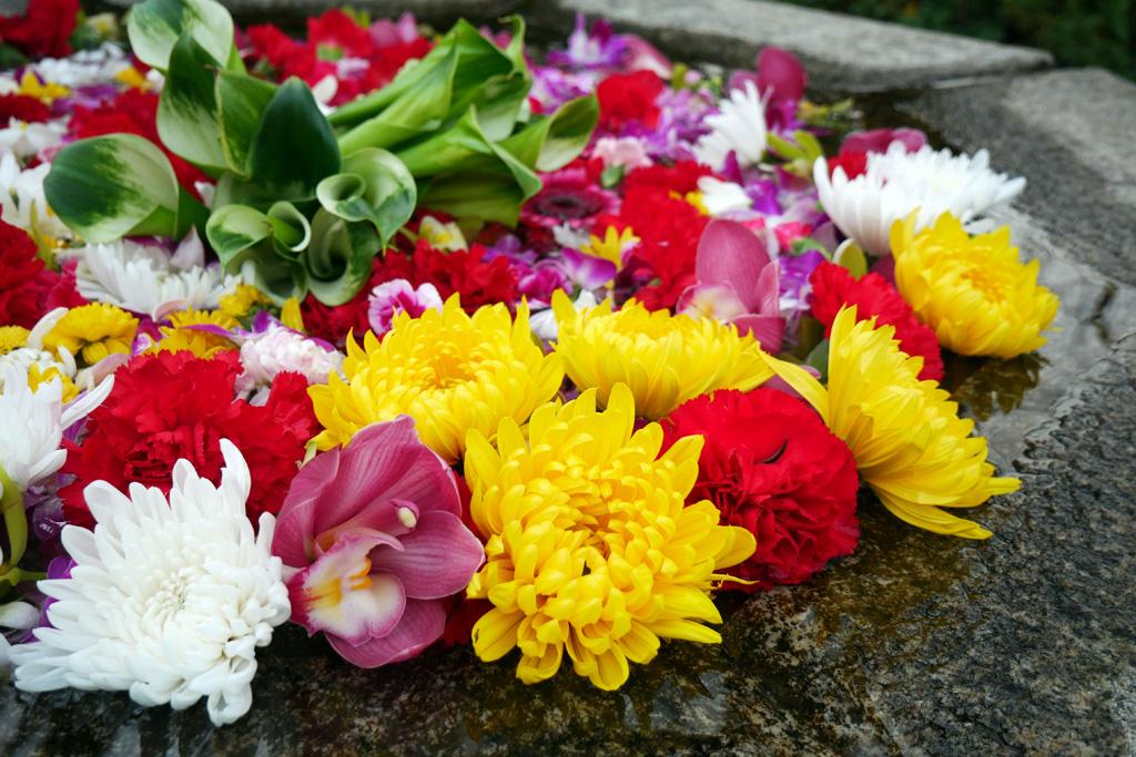 清水寺の花手水の写真素材