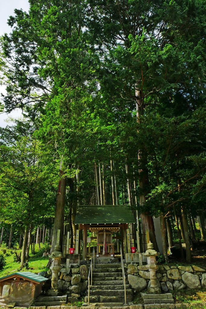 飯導寺神社の写真素材